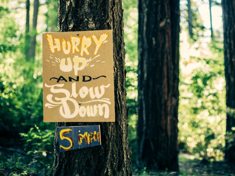 How to Nourish Screen-Free Connections: Lessons from Camp Grounded